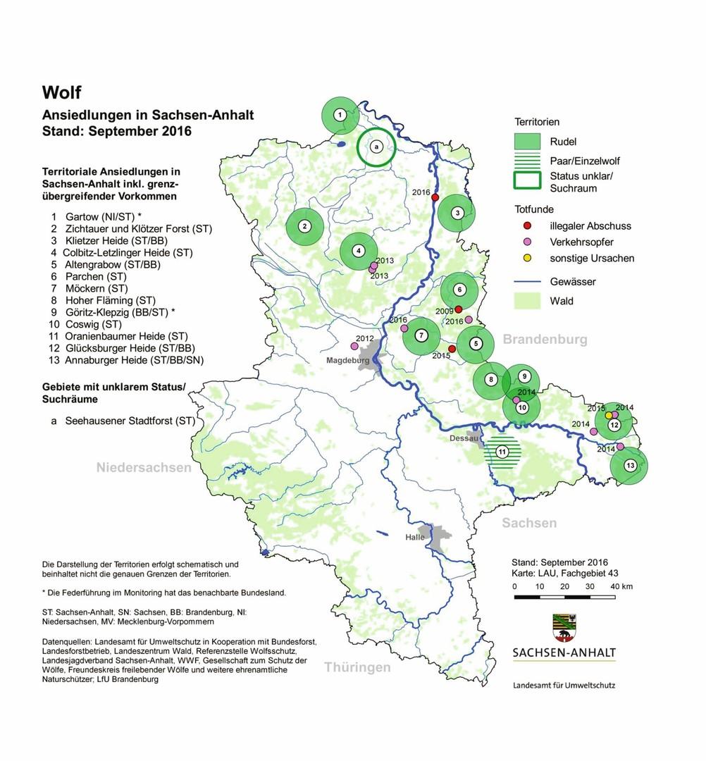 Wölfe In Brandenburg Karte.Wölfe In Brandenburg Das Sind Die Zehn Wichtigsten Fakten Rbb 24